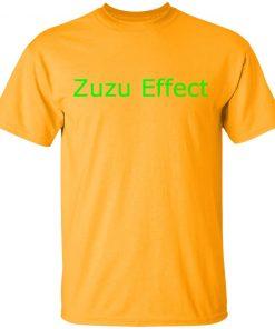 redirect 2091