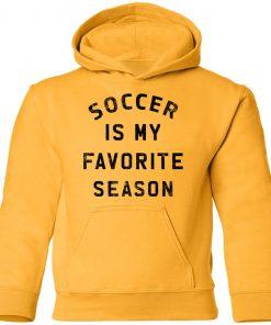 Private: Soccer Is My Favorite Season Youth Hoodie