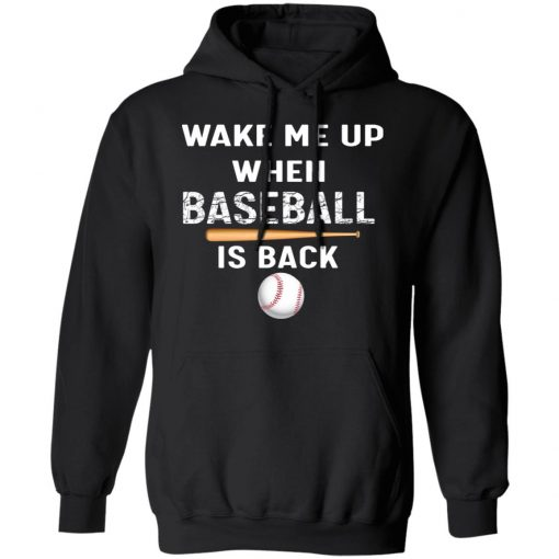 Private: GydiaGarden Wake Me Up When Baseball is Back Hoodie