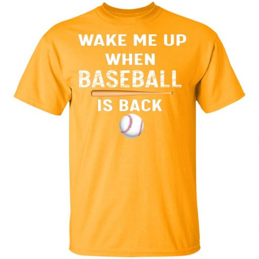 Private: GydiaGarden Wake Me Up When Baseball is Back Youth T-Shirt