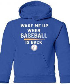 Private: GydiaGarden Wake Me Up When Baseball is Back Youth Hoodie